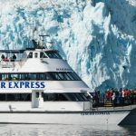 Major marine tours in seward alaska