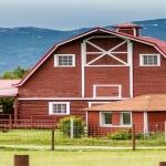 Musk Ox Farm Palmer Alaska