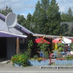 mountian high pizza talkeetna alaska