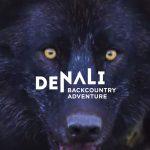 denali back country adventures