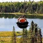 Denali Zipline Tours Talkeetna Alaska