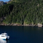 Kenai Fjords Tours Seward Alaska
