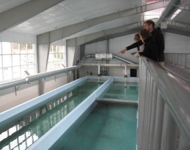 The Macaulay Salmon Hatchery